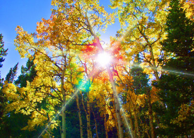 Aspen-filtered Sun