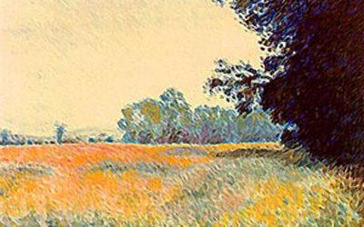 Monet Field