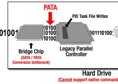 pata-bridge-art