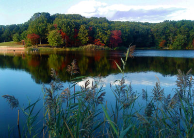 Hook's Pond